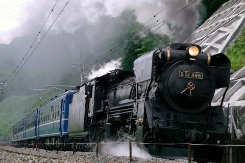 【JR東】D51-498+12系4両+DE10-1698 試運転(4日目)