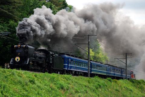 【JR東】D51-498牽引 快速「SLやまなし」運転(30日)