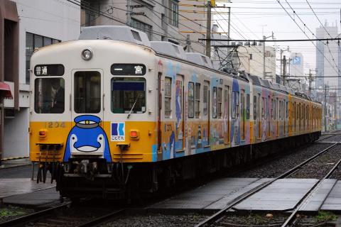 【ことでん】ことちゃんことみちゃん結婚記念列車運行
