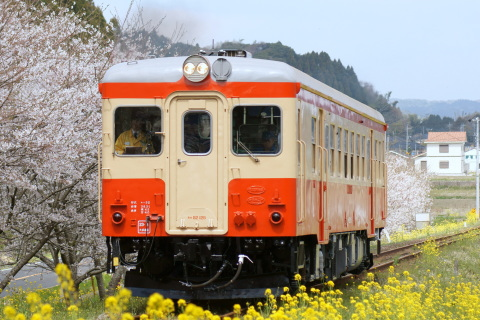【いすみ】キハ52-125 公開試運転実施