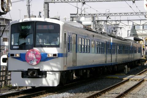 【秩鉄】6000系6003Fに「あの花×芝桜」ヘッドマーク掲出