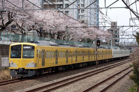【西武】新101系245F 甲種輸送