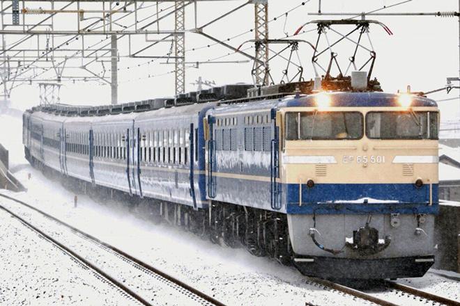 【JR東】急行かながわ号(カナロコ列車)運転