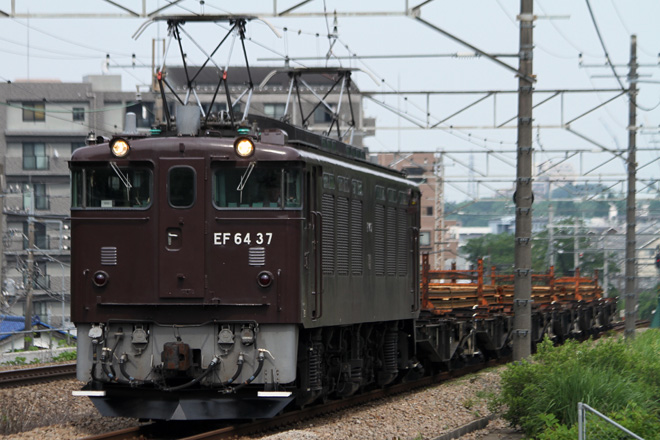【JR東】EF64-37牽引 豊野・川中島工臨運転
