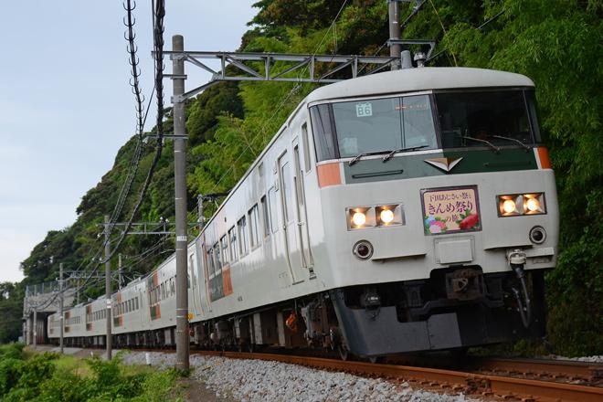 【JR東】185系使用下田あじさい祭りときんめ祭りの旅号