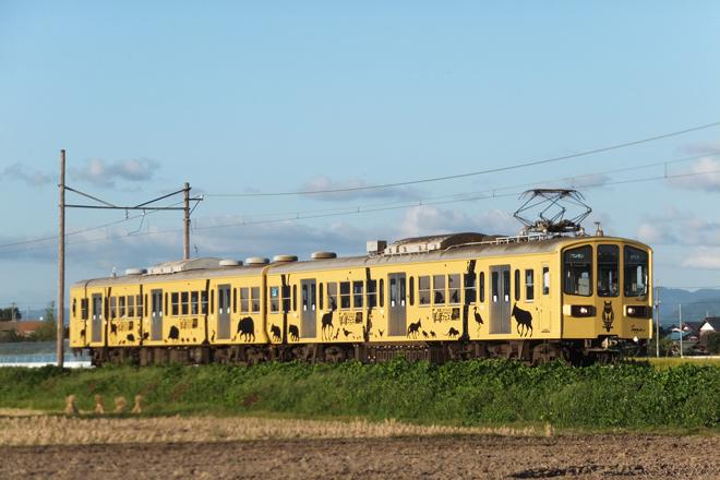 【近江】〈動物の切り絵ラッピング電車〉運行開始