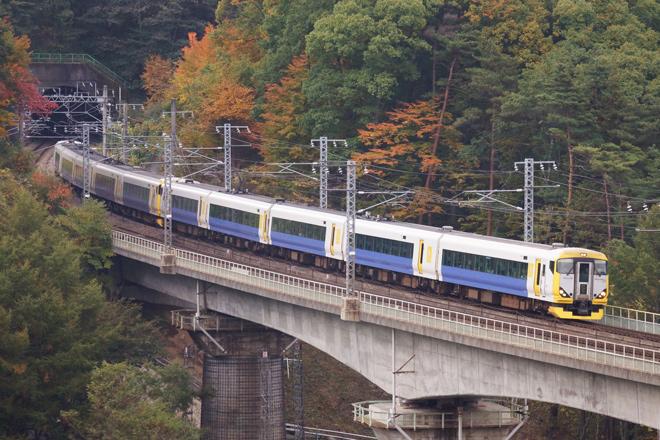 【JR東】E257系幕張車による団臨運転
