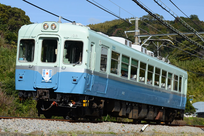 【伊豆急】100系クモハ103 団体専用列車