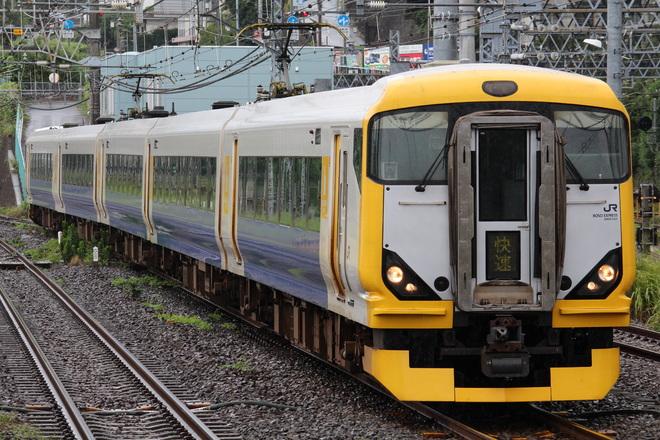 【JR東】E257系幕張車使用の臨時快速「サマーホリデー湘南箱根」号運転