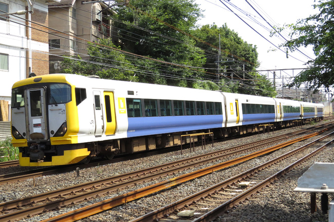 【JR東】E257系500番台使用の団体列車『氣志團万博号』運転