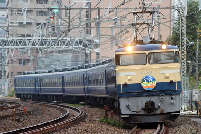【JR東】EF65-501・D51-498牽引 EL&SLみなかみ号 運転