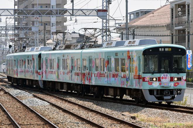 【西鉄】「コスモス電車」運行