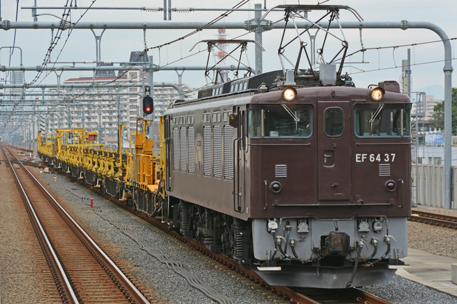 【JR東】EF64-37甲府工臨返空運転