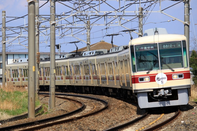 【新京成】8800形8812編成「2017年マリーンズ号」運行開始
