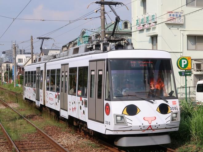 【東急】世田谷線「幸福の招き猫電車」運行開始