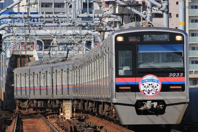 【京成】3000形3033編成『京成パンダ号』運行