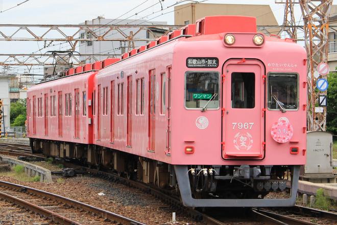 【南海】『めでたい電車』愛称を命名