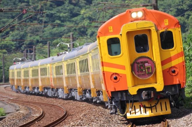【台鉄】EMU100復活運転で台東へ