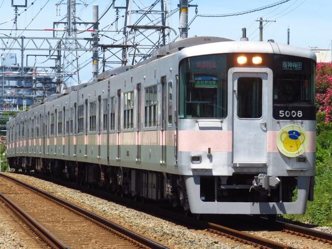 【山電】さくらとおでかけ山陽電車