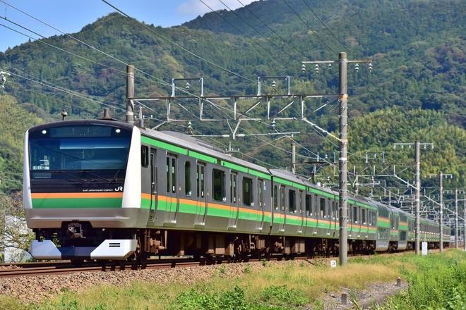 【JR東】E233系を使用した「伊豆するがひまわり号」が浜松へ