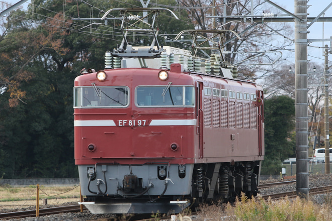 【JR東】EF81-97宇都宮へ