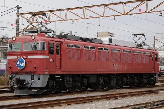 【JR東】EF81-97に北斗星ヘッドマーク