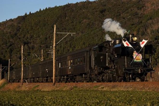 【大鉄】SL 列車「かわね路号」を「新春開運号」として運転