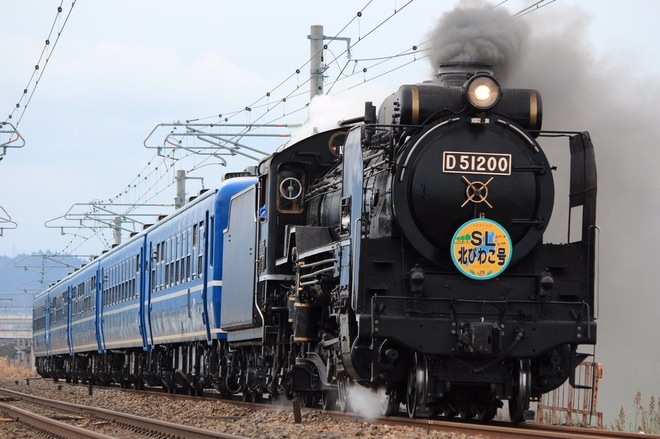 【JR西】D51-200牽引のSL北びわこ号