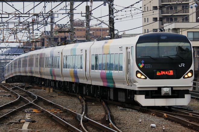 【JR東】E257系0番台 定期運用終了