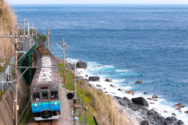 【伊豆急】8000系TB-7編成団体臨時列車