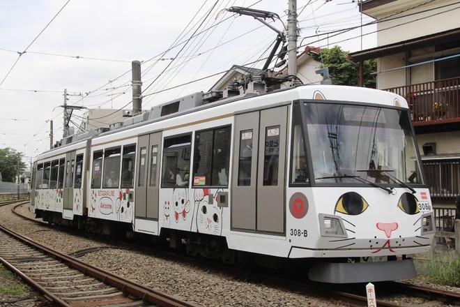 【東急】「幸福の招き猫電車」運行開始